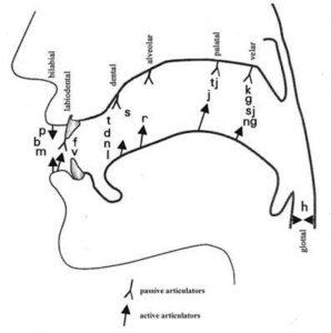pronunciation chart