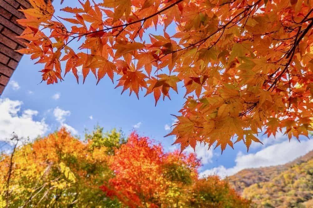 italian short story dolomiti autumn