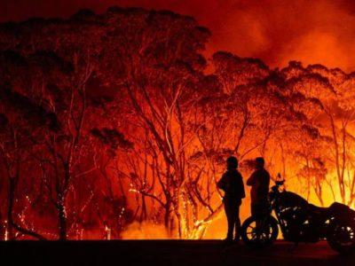 Gravi incendi in Australia