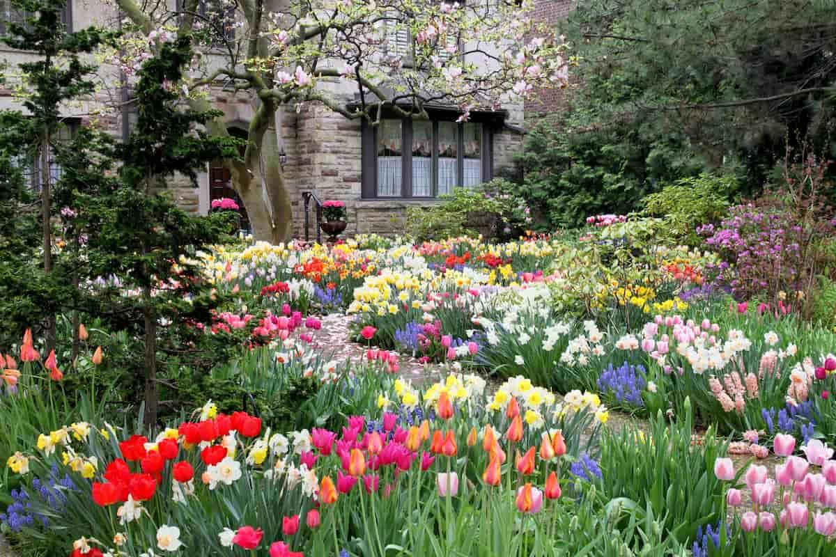 Il giardino divino