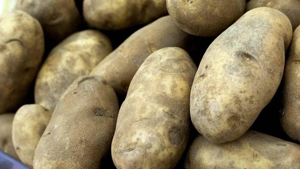 italian news potatoes