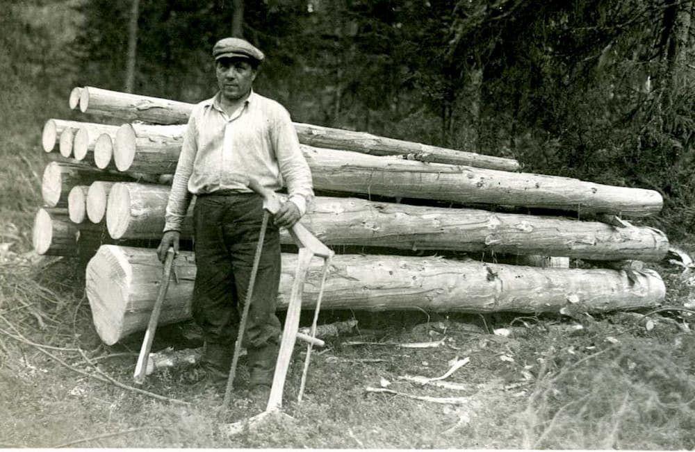 italian short story lumberjack